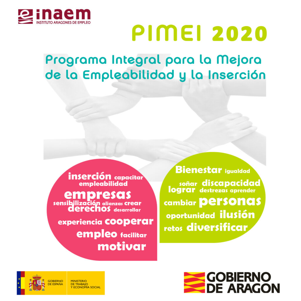 Programa PIMEI 2020
